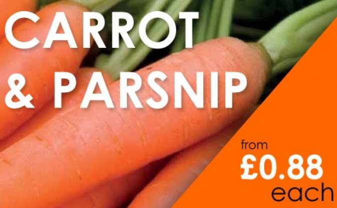 Carrot and Parsnip Seeds