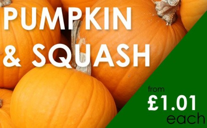 Pumpkin, Squash and Courgette