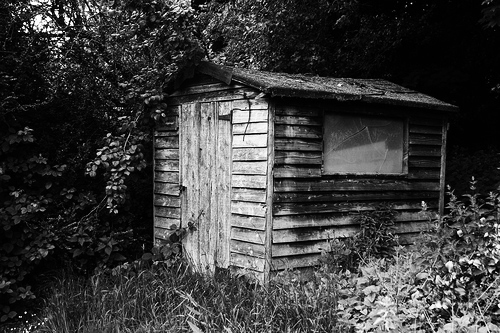 Garden Shed to Sucess?