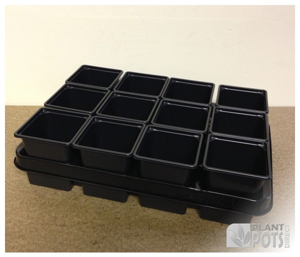 Carry tray with 12x 9cm Square plastic plant pot (3.5 inch square)