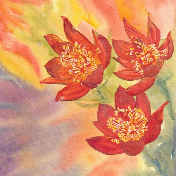 Dramatic floral image - watercolour