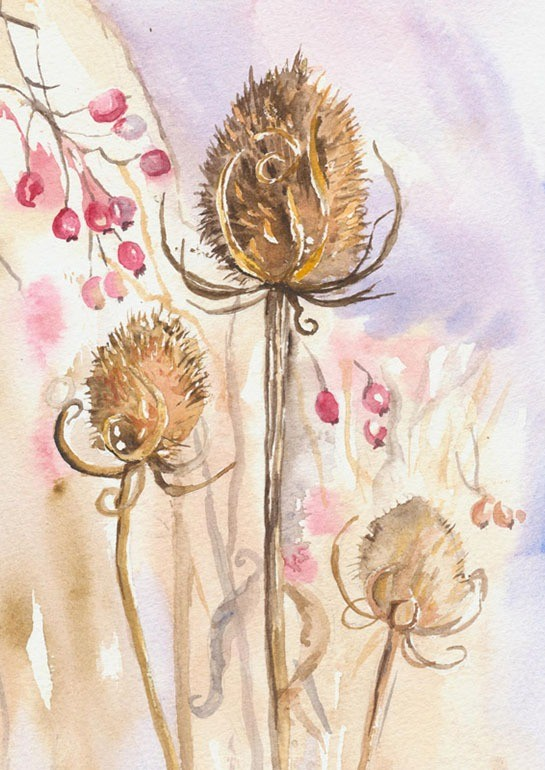 Delicate watercolour of autumn berries with teasel heads